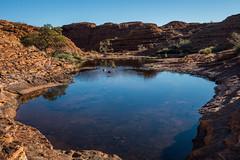 Kings Canyon Northern Territory-11