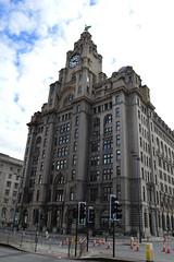 Royal Liver Building (lcfcian1) Tags: royal liver building royalliverbuilding liverpool