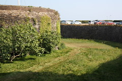 View of Tower and Moat (Dark Dwarf) Tags: holiday august 2016 kent deal castle round tower moat