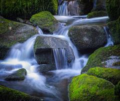 rushing down (rpffm58) Tags: lowlight longexposure green silky flowing pentax k5 moss bavaria bayerischerwald