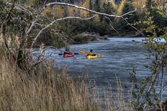Autumn, Alaska, 2016 (tpeters2600) Tags: alaska autumn fall autumninalaska canon eos7d hdr photomatix tamronaf18270mmf3563diiivcldasphericalif outdoors scenery landscape