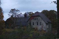 At sunset (Strange Artifact) Tags: fuji fujifilm x20 beelitz heilstatten berlin germany decay abandoned sunset