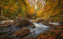 The river Braan (Katherine Fotheringham) Tags: the hermitage river braan scotland ossians hall leaves autumn colours waterfall