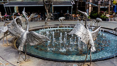 P1150340 (Pursuedbybear) Tags: sydney sydney2016 darlingharbour sculpture fountain brolga