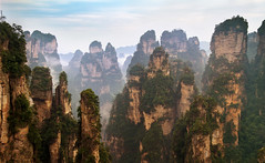 zhangjiajie National Park - Hunan - China (Rogg4n) Tags: china canoneos100d iconic hills nature zhangjiajie nationalpark avatar pandora hunan peak summit forest mountains landscape travel asia panorama  rock efs18135mmf3556isstm sky clouds peaks pine