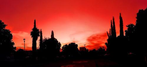 Rojo en Rojo/Red in Red