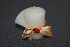 VELA ENROLLADA BLANCA (ilmiomondoincera) Tags: vela enrollada blanca lavanda mariquita decoracion bombonera regalo artesanal titulo