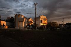 2008/12/08 06:57 Fujisawa (Masayo Nabeshima) Tags: morning sunlight nikon d3