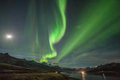 In Faskrudsfjordur (*Jonina*) Tags: longexposure sky moon night iceland 500views ísland northernlights auroraborealis 1000views nótt himinn norðurljós 50faves tunglið 25faves fáskrúðsfjörður faskrudsfjordur jónínaguðrúnóskarsdóttir december1st2014
