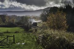 5's on the Marches (Gingydadtog) Tags: train shropshire steam locomotive dorrington passengertrain black5 45407 44871