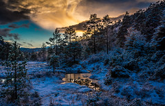 Winter (scarburgiceras) Tags: sun snow color water norway clouds evening woods bergen