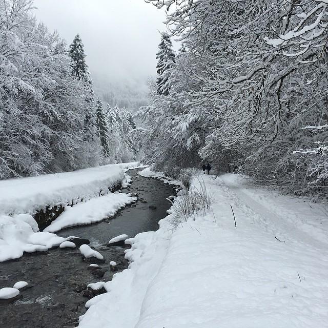 Aprem rando dans la neige 😃 #samoens #hautesavoie