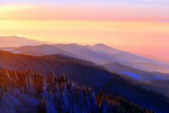 Tagesende (ploh1) Tags: winter natur berge landschaft wald bume schwarzwald schauinsland tagesende