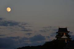 Okayama Castle Under Supermoon (Bracus Triticum) Tags: autumn moon castle japan october under 日本 okayama 2014 岡山県 10月 十月 岡山市 神無月 kannazuki 中国地方 okayamacity okayamaprefecture chūgoku supermoon かんなづき themonthwhentherearenogods 平成26年