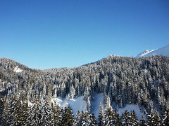/ (plattnerbauten) Tags: trees winter sky snow architecture forest switzerland himmel mountians amden plattnerbauten plattnerbautench