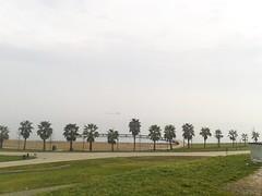 Seka (Ulysses') Tags: park foto samsung gemi izmit seka