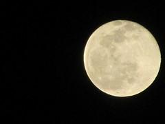 Full moon (shanjaikanth) Tags: moon white full fullmoon srilanka poya srilankans shanjaikanthphotography shanjaikanth shanjaiphotography
