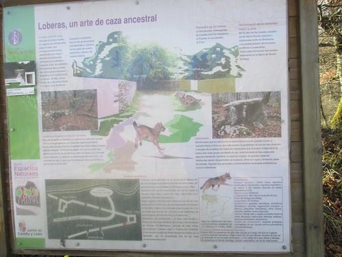 monte-santiago-senderismo-sermar-valladolid-ruta365 (43)