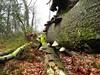 "25-02-2012 Ugelen 30 Km (10) • <a style=""font-size:0.8em;"" href=""http://www.flickr.com/photos/118469228@N03/16362115560/"" target=""_blank"">View on Flickr</a>"