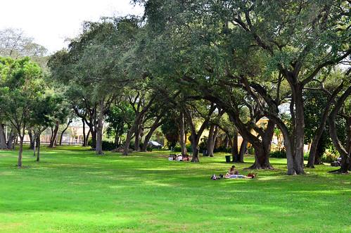 Miami Park