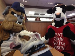 "Stop me if you've heard this one...so two #bulldogs and a cow walk into a @ChickfilA... #ButlerNight #GoDawgs • <a style=""font-size:0.8em;"" href=""http://www.flickr.com/photos/73758397@N07/16471338889/"" target=""_blank"">View on Flickr</a>"
