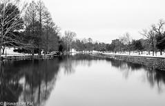 Exall Lake (Biswamber Pal Photography) Tags: longexposure winter blackandwhite lake snow reflection landscape dallas nikon texas lee manfrotto 2015 d90 exalllake nikon2470mmf28 bigstopper
