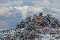 Snowy Day in the Slinkard/Little Antelope Wildlife Area (Jeffrey Sullivan) Tags: california copyright usa snow mill jeff rock forest canon outdoors photography eos photo site mine hiking sierra stamp formation walker national snowshoeing sullivan activity eastern active feburary 2015 monocounty 70d toiyabe