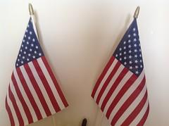 flags (gulf corals) Tags: lemoncoral lemon coral gulf gulfcoral gulfcorals