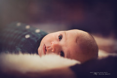 Brand New - Rokinon 50mm f/1.4 (Thousand Word Images by Dustin Abbott) Tags: portrait baby ontario canada texture lens pembroke infant review flare fullframe softbox manualfocus petawawa wideopen familytime 2015 canoneos6d jessicadrossin thousandwordimages dustinabbott dustinabbottnet adobelightroom5 adobephotoshopcc metz64af1flash alienskinexposure7 rokinon50mmf14asifumc