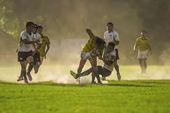 爭奪 (Isaac Chiu5433) Tags: sports rugby dust sunlight power 橄欖球 運動 塵土飛揚 力量 陽光