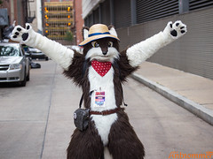 20160703_Anthrocon_IMG_0109 (antnommer) Tags: furry pittsburgh pennsylvania parade pa convention ac fursuit anthrocon fursuits ac2016 anthrocon2016
