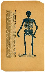 The Ghost Card, or the Skeleton on the Wall (Rotated) (Alan Mays) Tags: ephemera noveltycards ghostcards cards paper printed ghostcard ghosts skeletononthewall skeletons walls opticalillusions afterimages images spots illusions instructions novelties parlorentertainments parlors entertainments illustrations flirtations flirtationcards black white antique old vintage typefaces type typography fonts