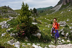 il giardino di Laura (Franco Vannini) Tags: dolomiti dolomites odles sassrigais fermeda seceda valgardena valdifunes odle