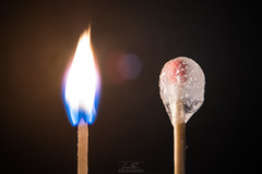 A Shot of Ice and Fire (ElleFlorio) Tags: macromondays macro mondays fire ice hot cold water elements background black opposites matches creative lucaflorio reverse lens reverselens