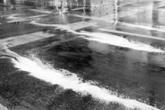 foam [analog] (__J) Tags: canona1 a1 canon canonfd 50mm canonfd50mm18 berlin film analog scanned scan analogue blackandwhite schwarzweis sw bw chm400 iso400 chmfilm street strase rain regen foam schaum wet nass