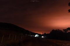 DSC_7090 (prebianca) Tags: nature nikon campo araucaria tamron churrasco gaucho cancela pinho d7000 noitelongexposure portoi prebianca