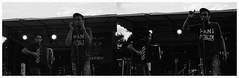 """Les Vieilles Margattes"" (The Blue Water Lily's Company) Tags: fdrouet nb bw concert musicien musician film lesvieillesmargattes f801s afd analog analogue analogique analogico blackandwhite noiretblanc negroyblanco biancoenero nikon nikkor 50mm18 scan epson v370 trix kodak poussé 1600 pushed grain lc29 diptyque diptych breton"