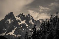 Srnit Matinale des Aiguilles (Frdric Fossard) Tags: monochrome spia nature fort sapin valle glacier ciel nuage aiguillesdechamonix alpes france hautesavoie massifdumontblanc grandscharmoz blaitire aiguilleduplan valledechamonix grain texture