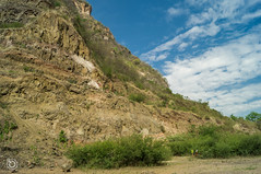 DSC03189 (Braulio Gmez) Tags: barrancadehuentitn biodiversidad caminoamascuala canyon canyonhuentitan faunayflora floresyplantas guadalajara jalisco mountainrange naturaleza sierra senderismo paisaje barrancadehuentitn barranca huentitn ixtlahuacandelro mxico guardianesdelabarranca