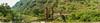 CUAAD (Braulio Gómez) Tags: barrancadehuentitã¡n biodiversidad caminoamascuala canyon canyonhuentitan faunayflora floresyplantas guadalajara guardianesdelabarranca huentitã¡n ixtlahuacandelrão jalisco mountainrange mã©xico naturaleza paisaje senderismo sierra barrancadehuentitán barranca huentitán ixtlahuacandelrío méxico