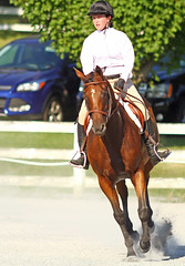 IMG_2549-01 (SJH Foto) Tags: horse show hunter jumper class girls teenage teen riders action shot tweens