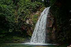 DSC01897 (rad!x) Tags: cascadaelsalto cuetzalan cuetzalandelprogreso mexico puebla pueblomagico waterfall everyone vacation