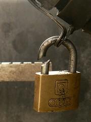 Mi primer candado (triniquito) Tags: candado candados chile buin padlock