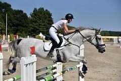 DSC_1154 (2) (ploufjf_64) Tags: paus show jumping chevaux pau 2016