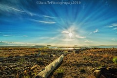 AAB_3817s (savillent) Tags: tuktoyaktuk northwest territories canada earth day sun birds people travel landscape blue sky pingos arctic climate north frontier savillent nikon summer august 2016