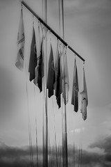 multiple allegiances (Noel Leone--my reality in and out of focus) Tags: flags poles doubleexposure me monochrome nowind incamera handheld nolayers