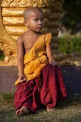 _MG_3295-le-14_04_2016-wat-thail-wattanaram-christophe-cochez (christophe cochez) Tags: burmes burma birmanie birman myanmar thailand thailande maesot myawadyy monk bonze novice religion watthailwattanaram travel voyage bouddhisme buddhism portrait