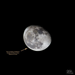Moon Occultation of Aldebaran (Michael Seeley) Tags: aldebaran florida fullmoon gibbousmoon huntersmoon melbourne michaelseeley mikeseeley moon moonphases moonpictures moonshot occultation satellitebeach waninggibbousmoon