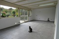 Veranda in progress (*SHERWOOD*) Tags: france vende larochesuryon home veranda