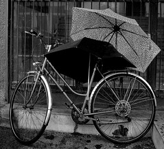 Two umbrella... (Sappho et amicae) Tags: bike umbrella bw street eljkagavrilovi